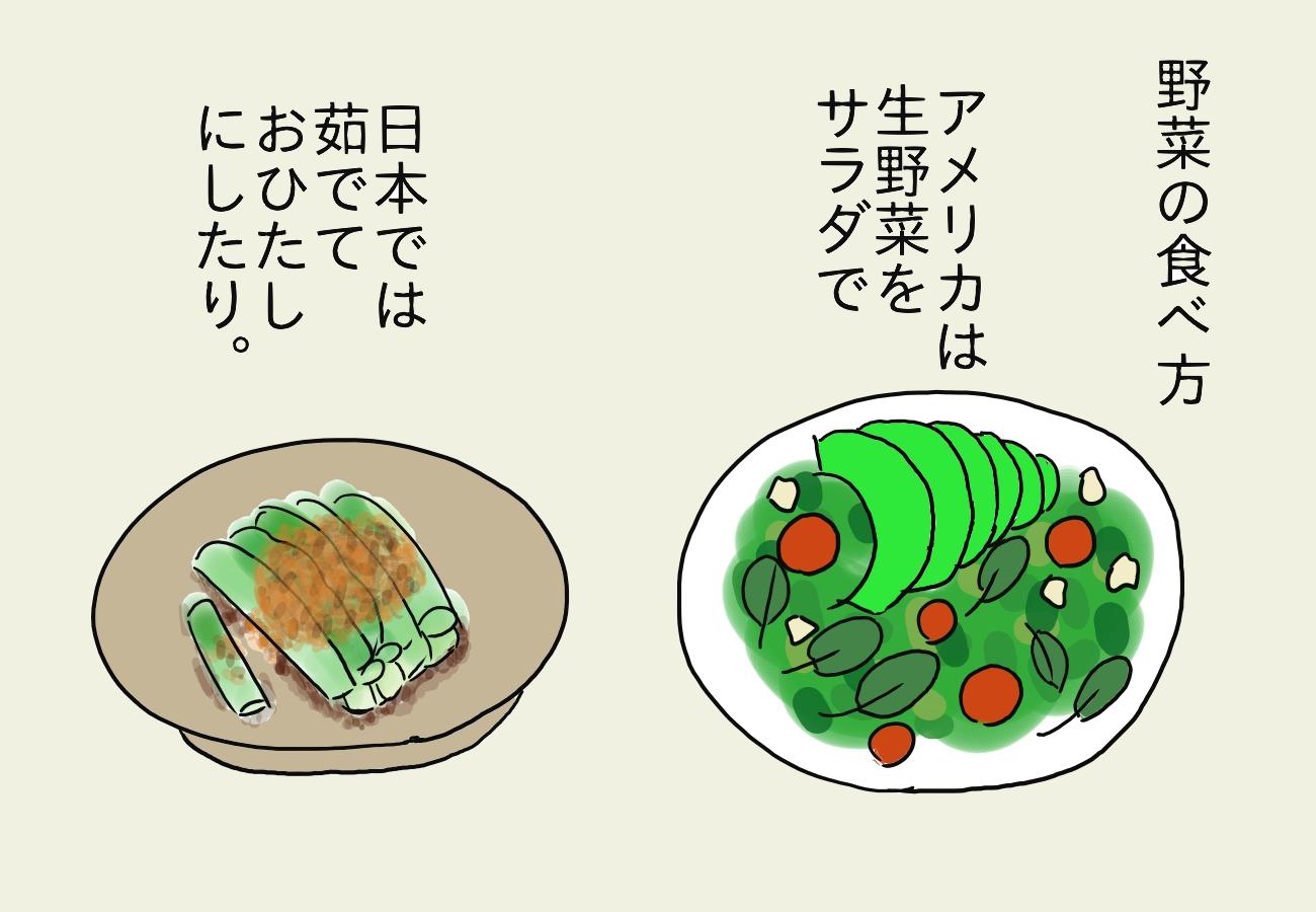 野菜の食べ方を説明。アメリカでは生野菜(サラダの絵)、日本では茹でて(おひたしの絵)