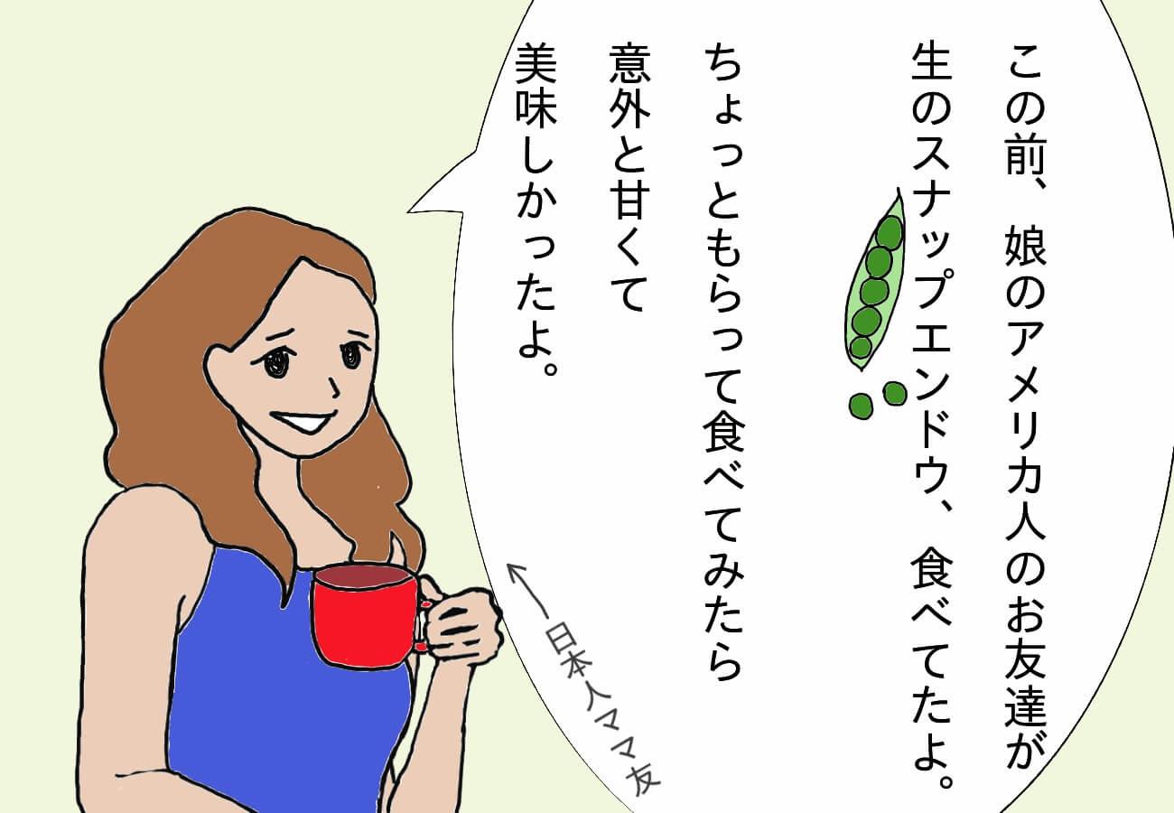 日本人ママ友が、アメリカ人の子供はスナップエンドウを生で食べるよ、と言っている絵