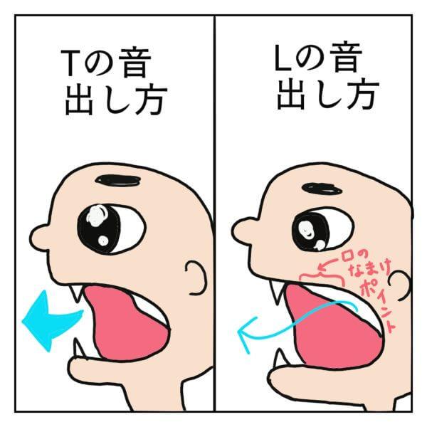 「T」と「L」の発音時の口内の違いを描いた絵