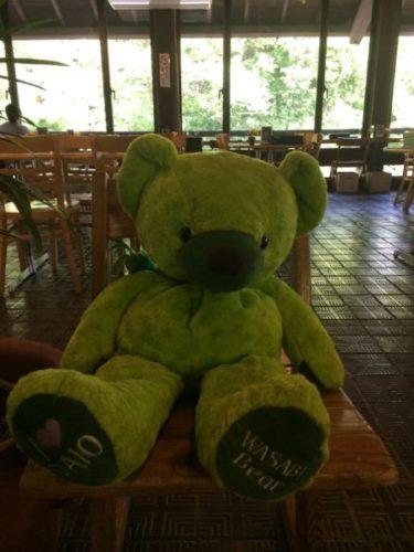 大王わさび農場のキャラクター緑の熊のゆめちゃん