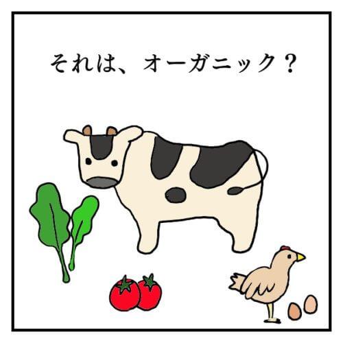 それはオーガニック?牛と卵と鶏とほうれん草とトマトの絵