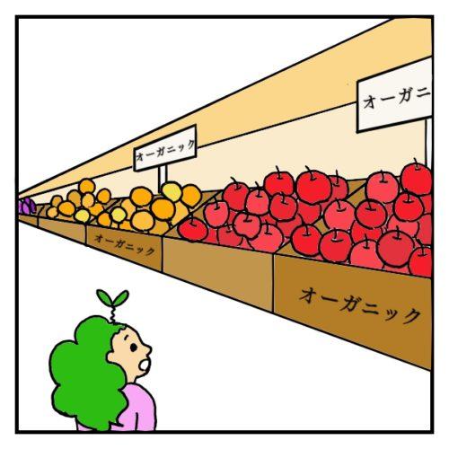 スーパーに並んだ果物ほとんどがオーガニックで驚いている絵