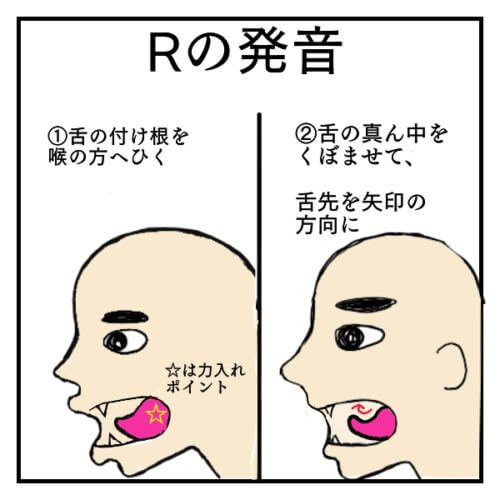 Rの発音を説明した絵。舌を喉の方向へ引き、その後舌の真ん中を凹ませたのがRの音
