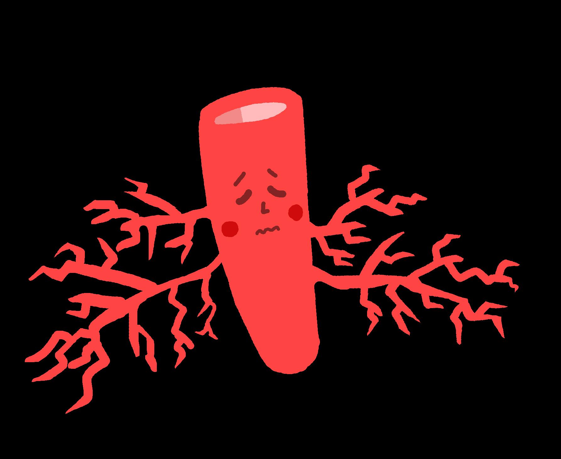 毛細血管ちゃん