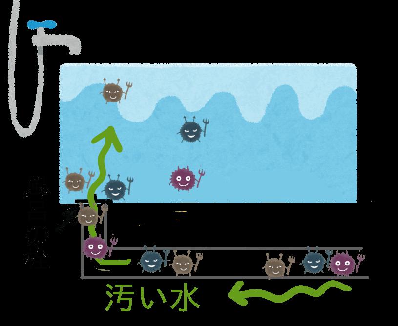 お風呂の排水溝から菌やカビが逆流している絵